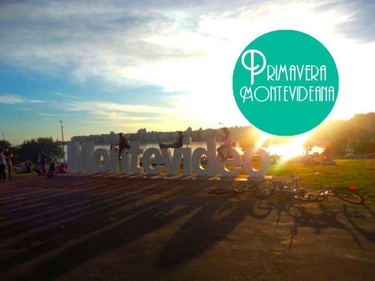 Pocitos -Montevideo
